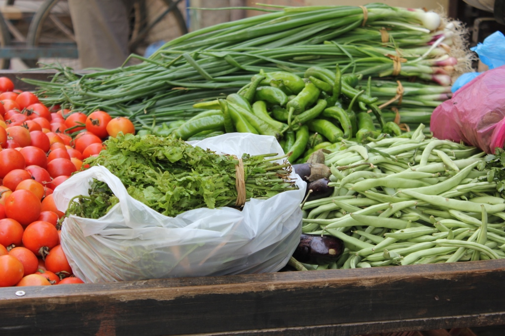 organic-farm (1024x683)